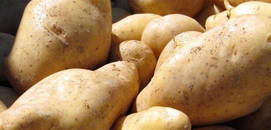 J'ai trop la patate ! (cette blague est vraiment pourrie)