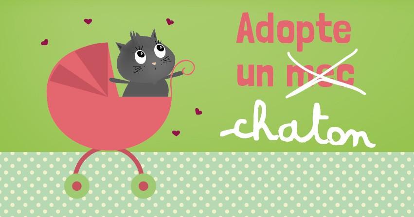 On A Teste Adopter Un Animal A Lyon