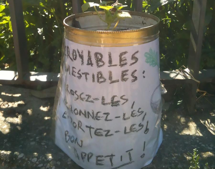 incroyables-comestibles-lyon