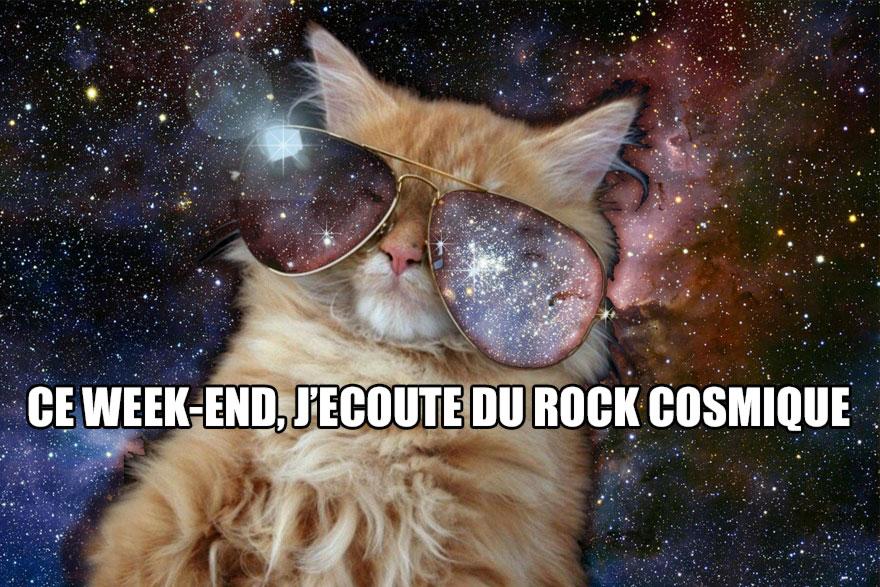 Cosmiccat