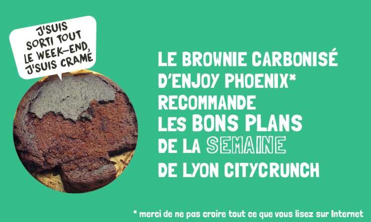 Modele-BPDLS-brownie