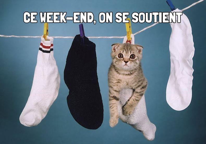Bon-paln-week-13-14-15-Novembre