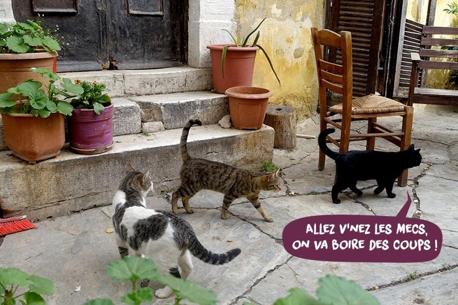 Athenes-CC