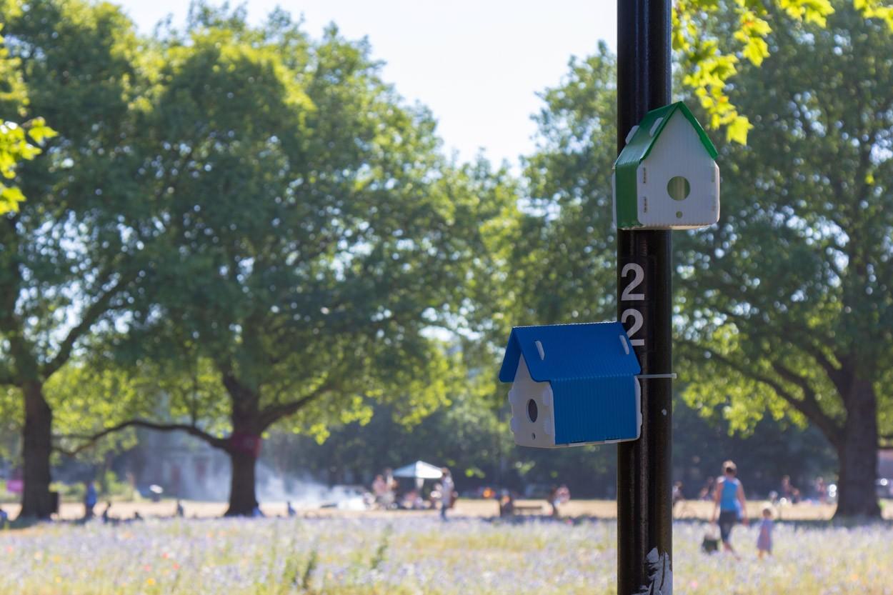 Fieldwork-Facility-The-Nest-Project-city-park-1