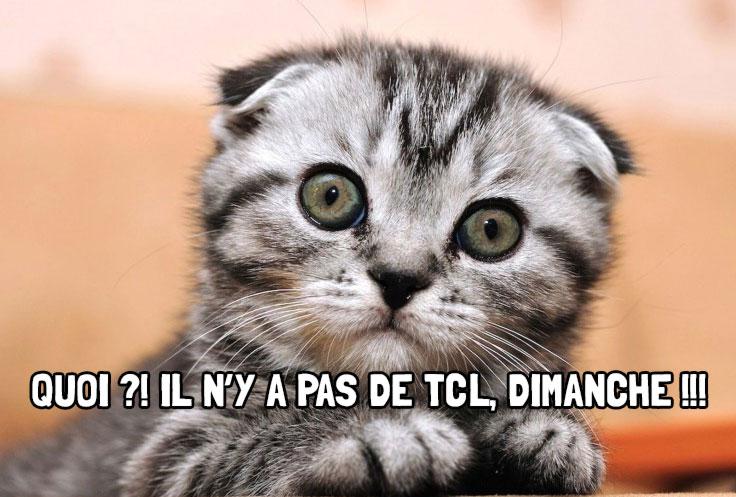 Chaton-TCL