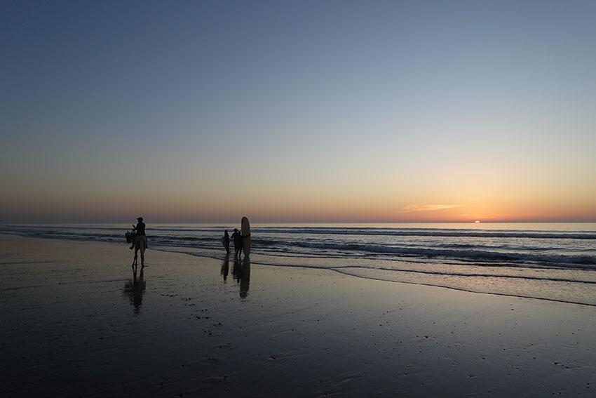 Ou faire du surf à Essaouira