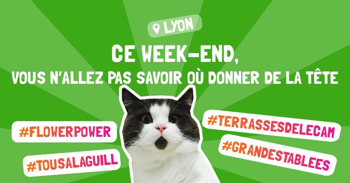 Que Faire A Lyon Ce Week End 1 2 Et 3 Juin 2018