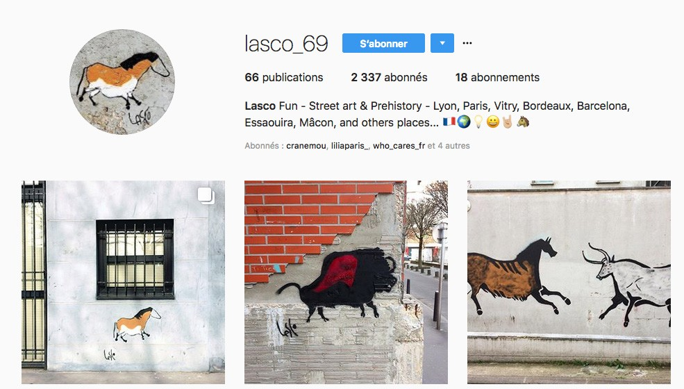 Street Artiste Lyonnais