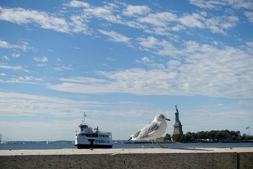 Ferry Statue de la Liberté