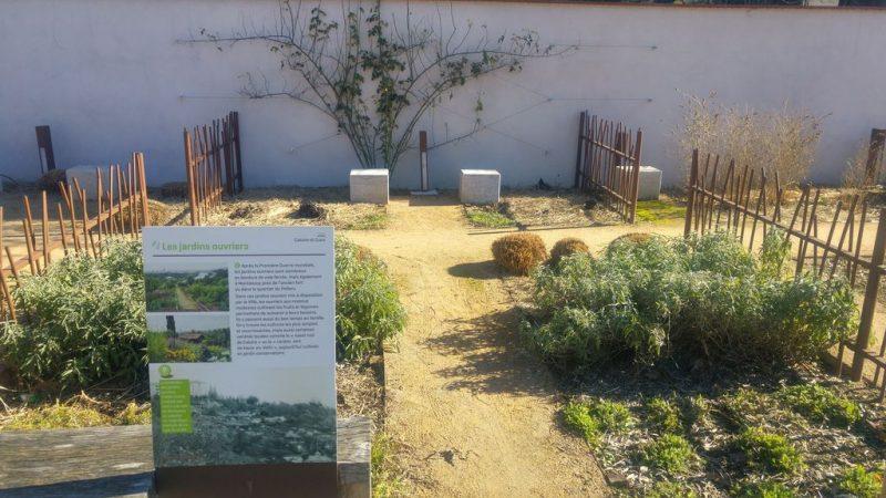 jardins_ouvriers_voie_verte