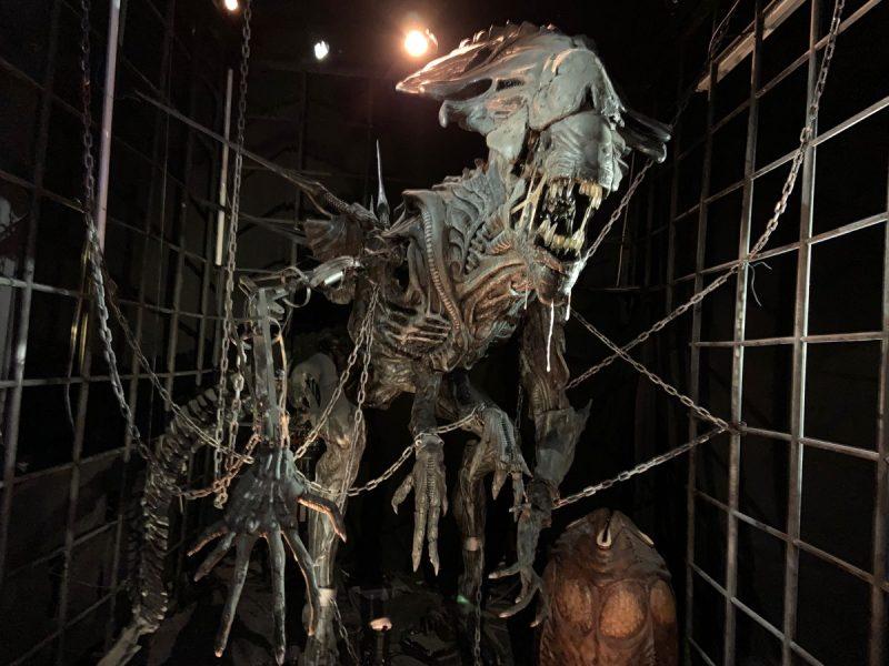 La reine Alien Musée à Lyon