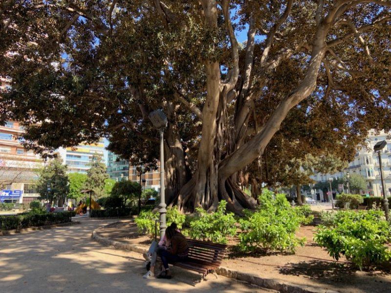 Jardin Valence