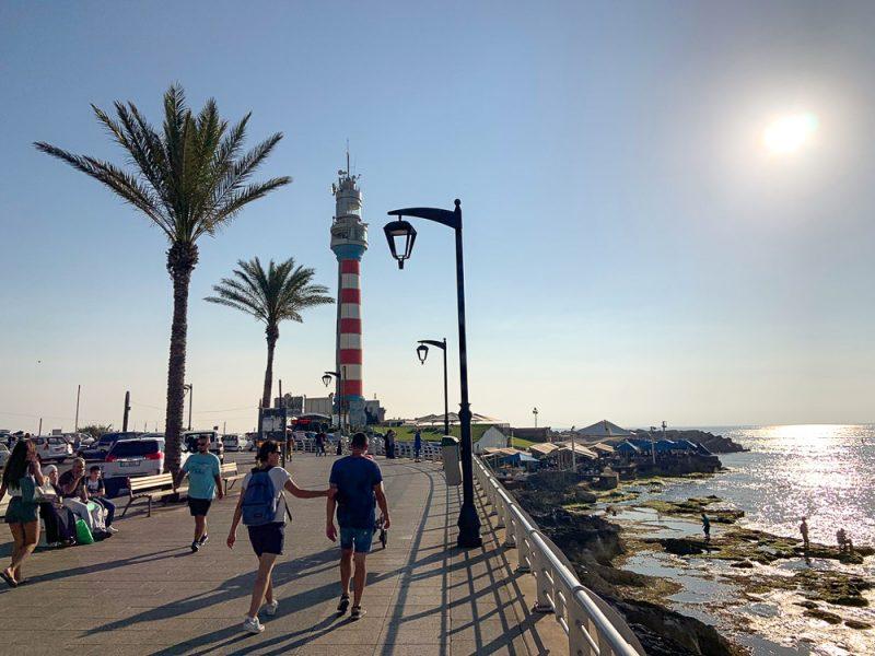 Corniche avec palmier et phare