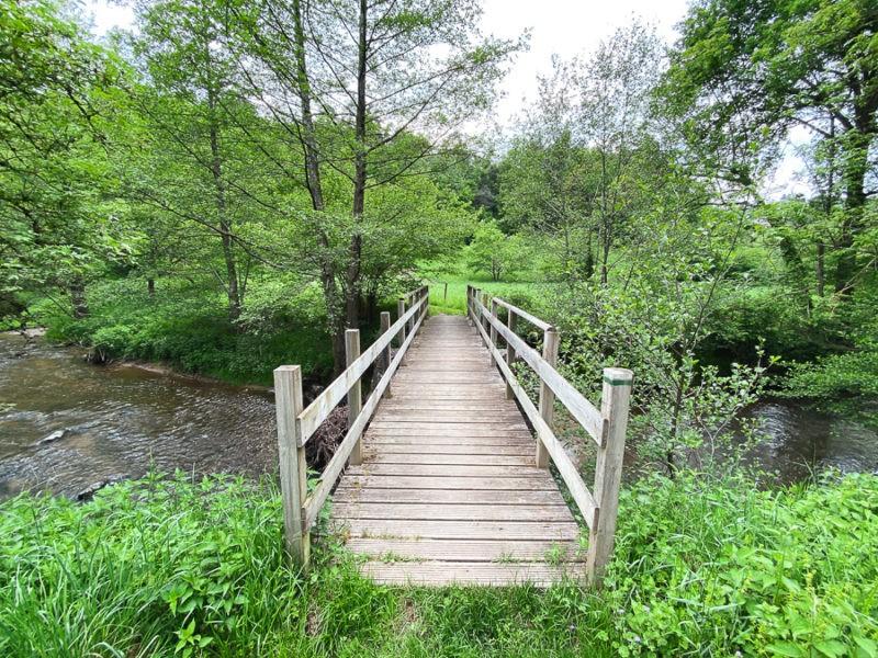 Balade avec un pont de bois