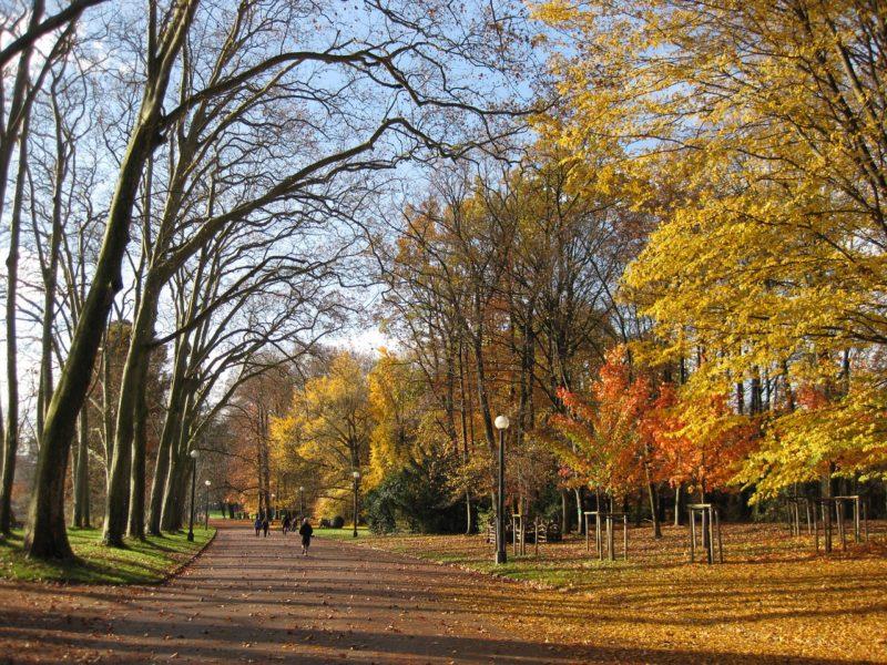 Parc de la Tête d'Or à l'automne