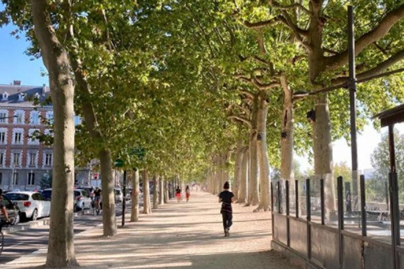 Lyon - Agenda semaine